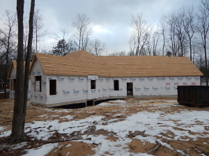 Roof is sheeted and ready!
